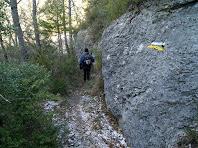 El darrer tram del corriol que porta a la cruïlla amb el camí d'accés a les Baumes del Molí de la Codina