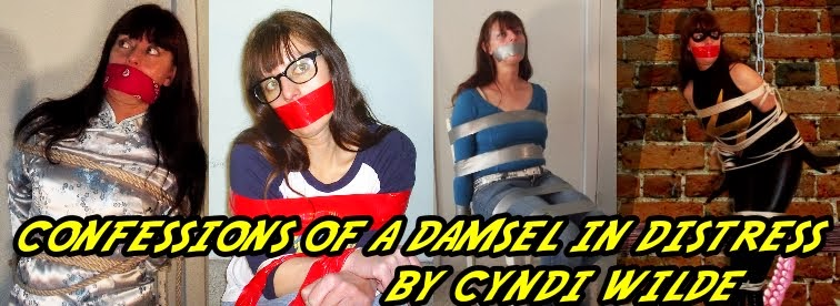 Confessions of a Damsel in Distress