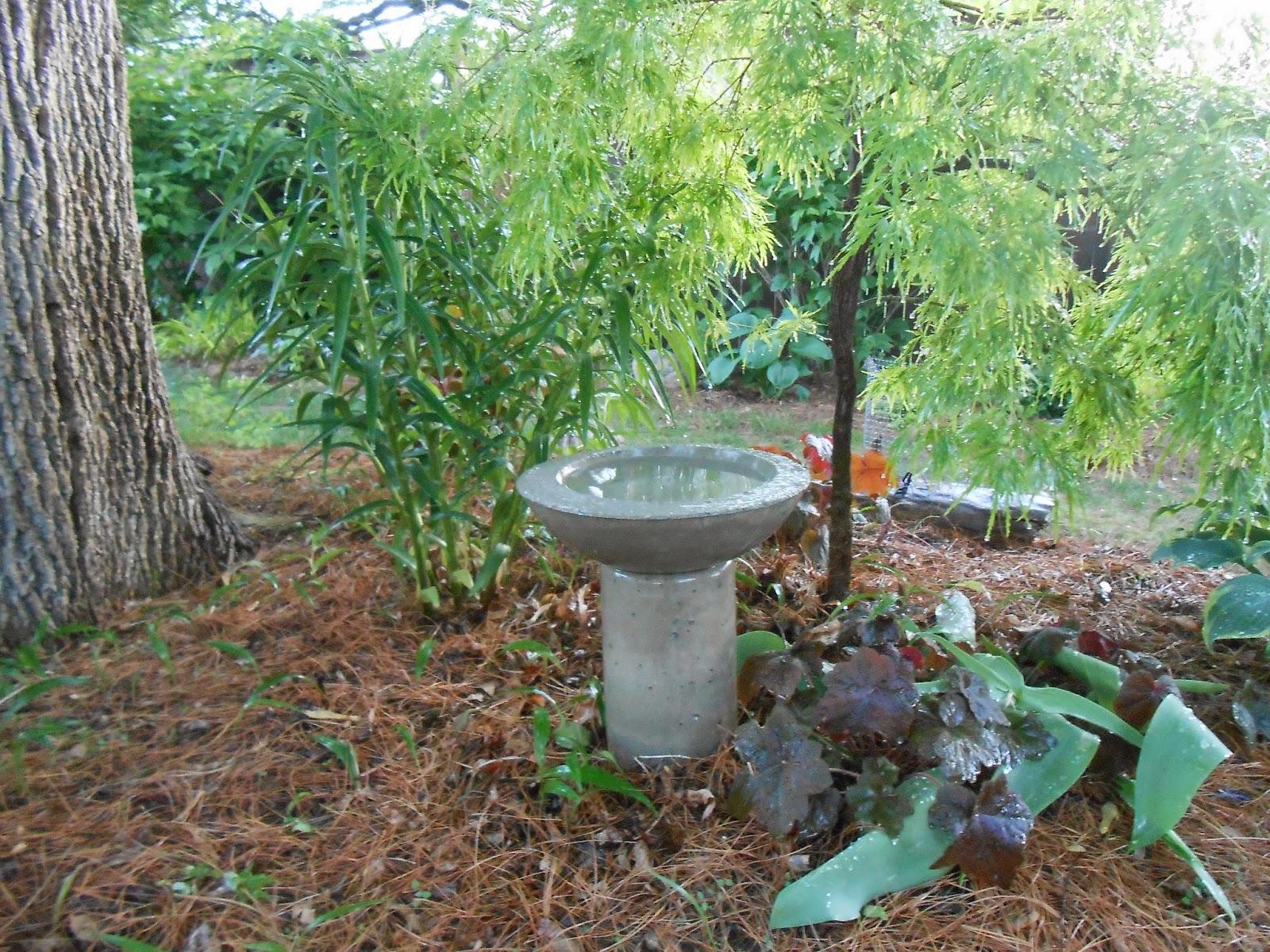Té, pote, pájaro, baño, jardín, arte, hecho, Thrifted, artículos - Morena's, esquina