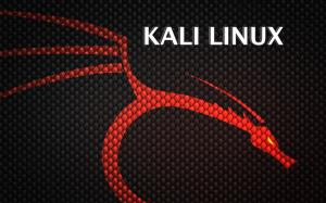 تعرف على نضام Kali Linux و مميزاته