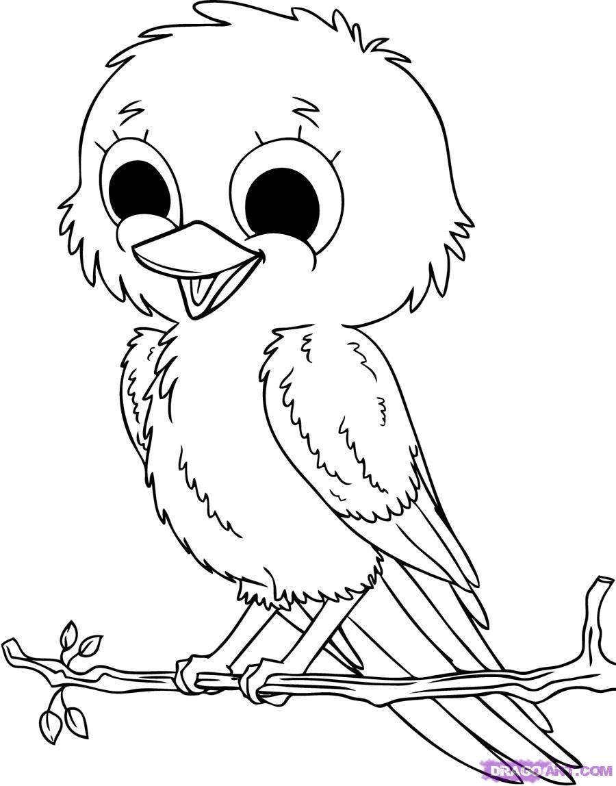 Coloring Pages Funny Bird Coloring