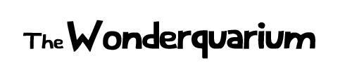 The Wonderquarium