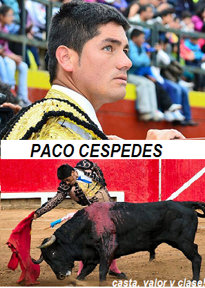 MATADOR DE TOROS