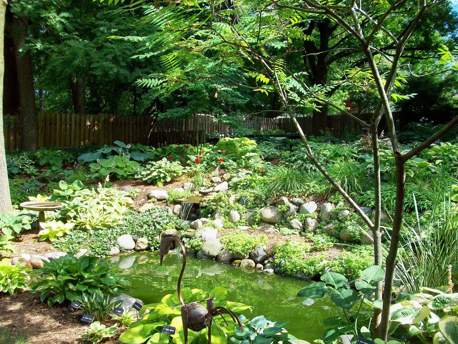 Quilt talk hosta heaven for Pond shade ideas