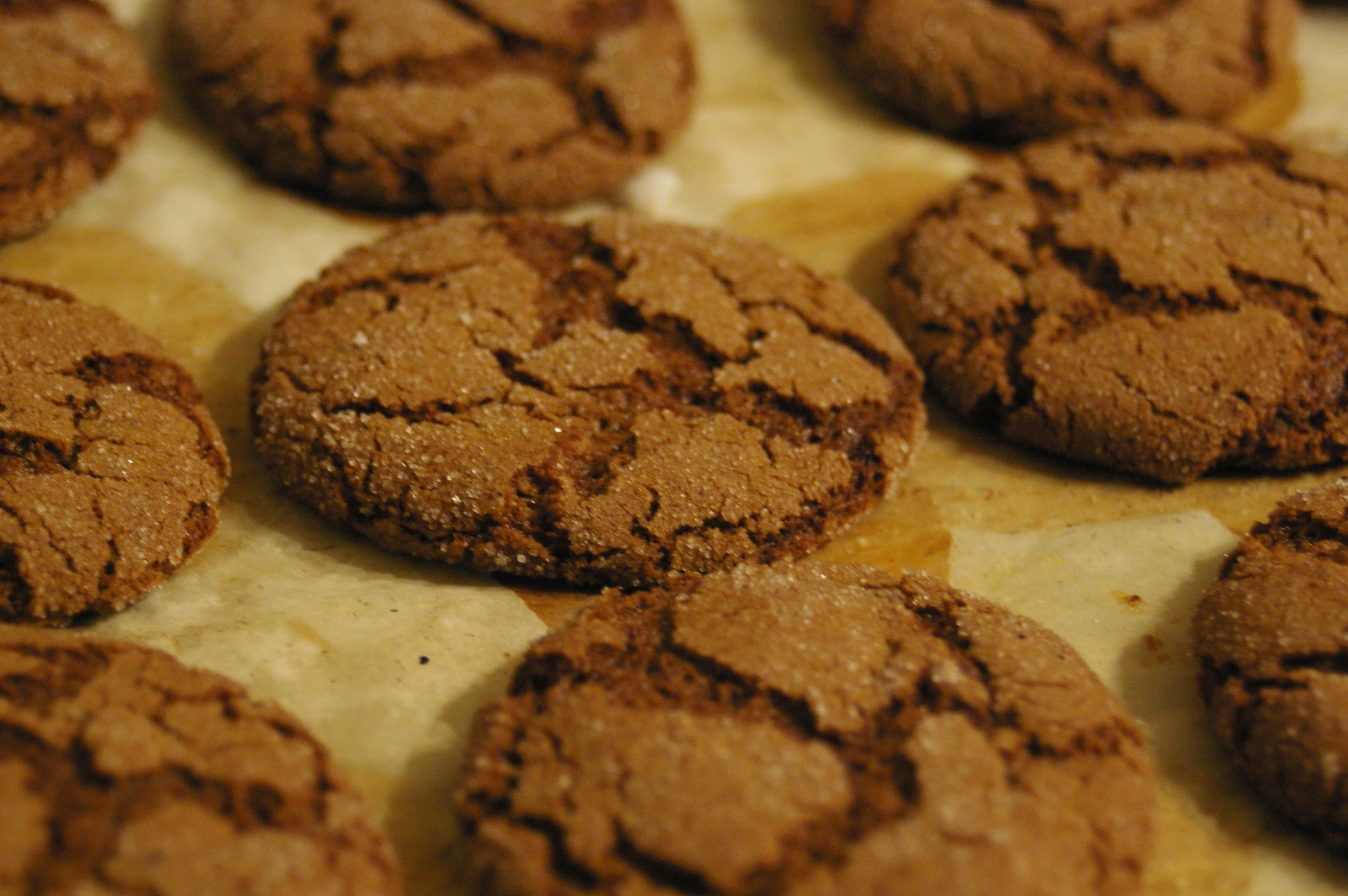 spicy hot gingersnaps are on spicy chocolate ginger snaps spicy hot ...