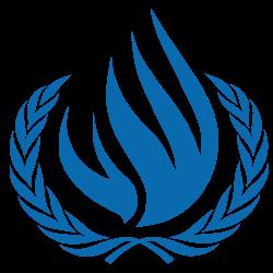 Arabia Saudyjska na czele ONZ-owskiej Rady Praw Człowieka.