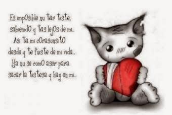 imagen de gatito triste