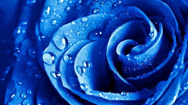 Fondo Full HD Rosa Azul con Gotas de Agua