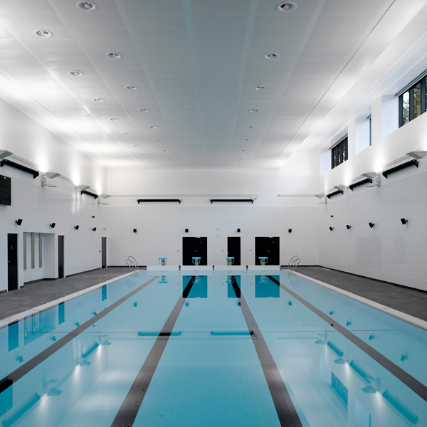 fthn from the hornets nest leaks about leaky holland park school swimming pool
