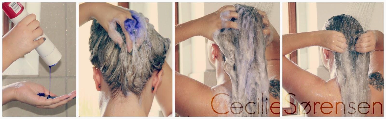 silver shampoo tørt hår