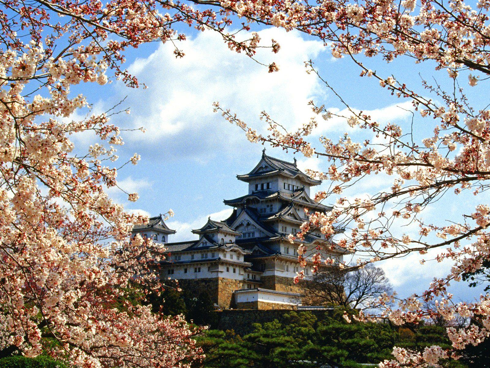 http://1.bp.blogspot.com/-ERefKkktlUw/TVPxK7LE0GI/AAAAAAAAB4Q/uaQ5BFLbpew/s1600/Himeji-jo+Castle%252C+Himeji%252C+Kinki%252C+Japan.jpg