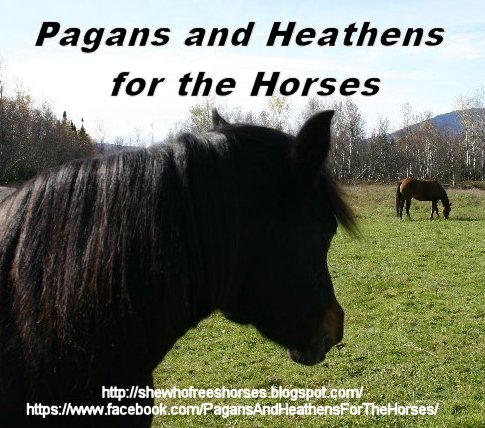 Pagans & Heathens for the Horses!