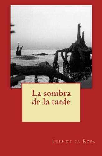 Mi nuevo libro de poemas