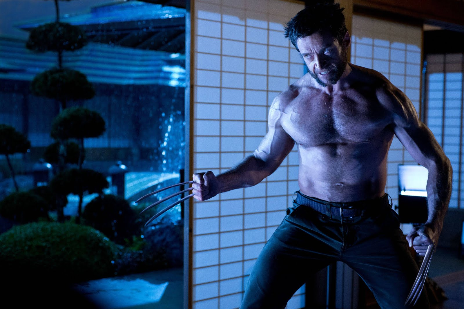 http://1.bp.blogspot.com/-ESBdff_xqoM/UPSSTWbRGyI/AAAAAAAAAFA/HVrJolIaCDA/s1600/The-Wolverine-Hugh-Jackman.jpg