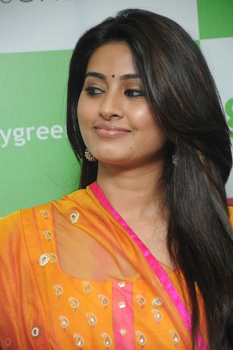 sneha sizzling new @ green trends launch glamour  images