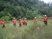 Treinamento de Busca em Floresta Urbana
