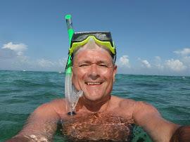 Whale Shark Dive 2012!