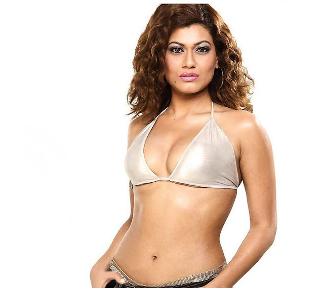 actress payal rohatgi navel show photos