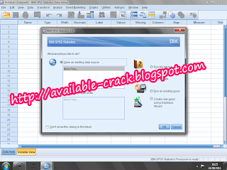 spss 21 with crack torrent download