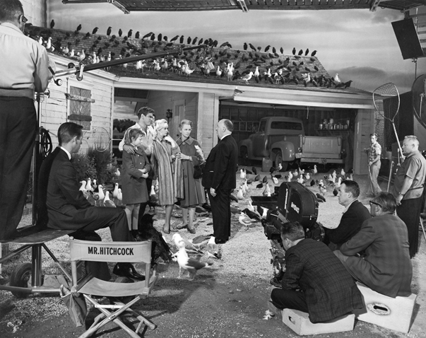 The Birds, Alfred Hitchcock in the set