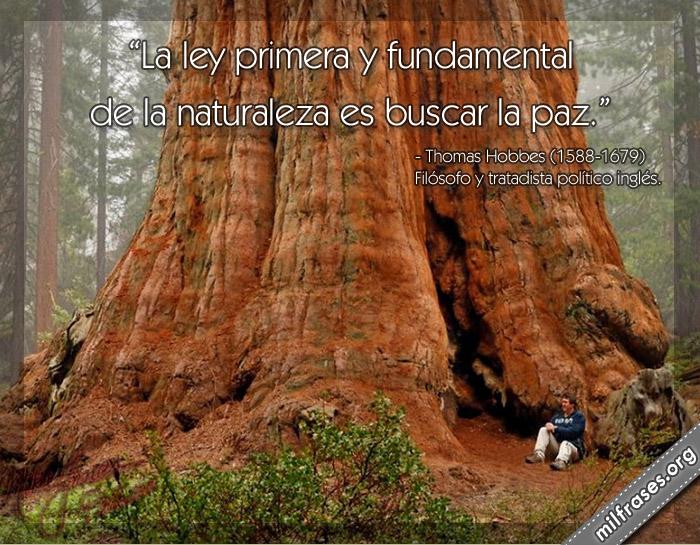 La ley primera y fundamental de la naturaleza es buscar la paz. frases de Thomas Hobbes (1588-1679) Filósofo y tratadista político inglés.