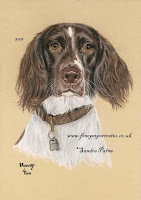 Commission a painting of your dog, horse or cat in pastels or charcoal