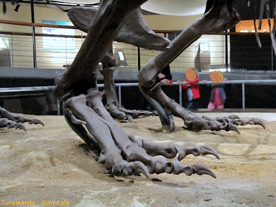 Dinosaurio Sauropodo MUJA Asturias