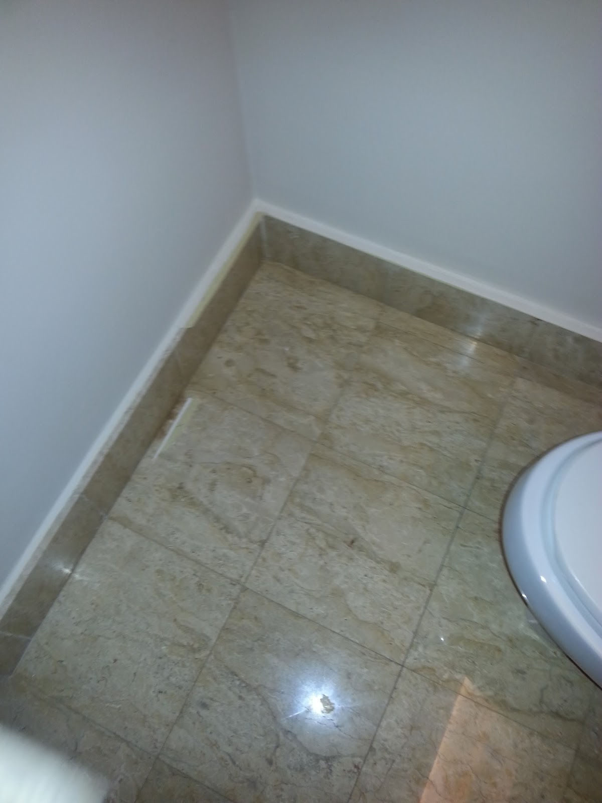 Inter-floor leakage - Causes, Impacts, Investigations and Repairs