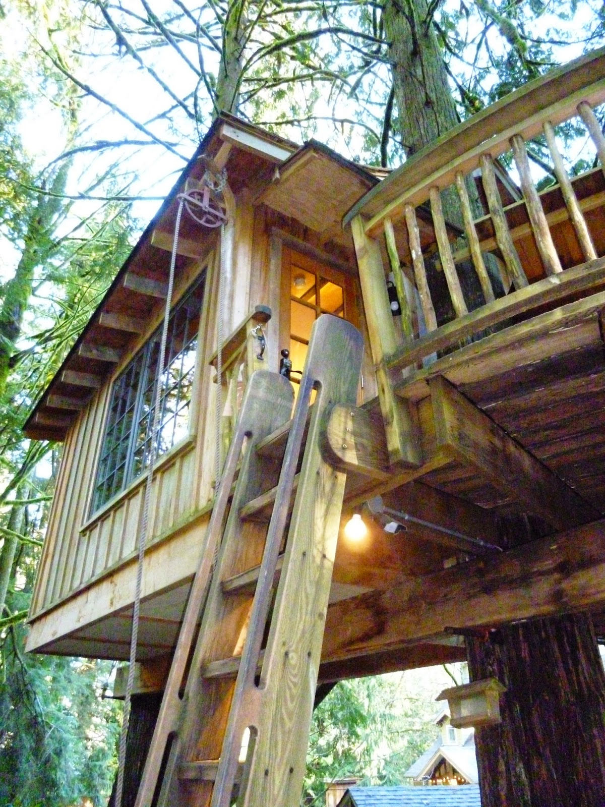Treehouse masters treehouse point Fall City Upper Pond Tree House At Treehouse Point Married To Adventure Pacific Nw Travels And Tails Up In Tree House At Treehouse Point
