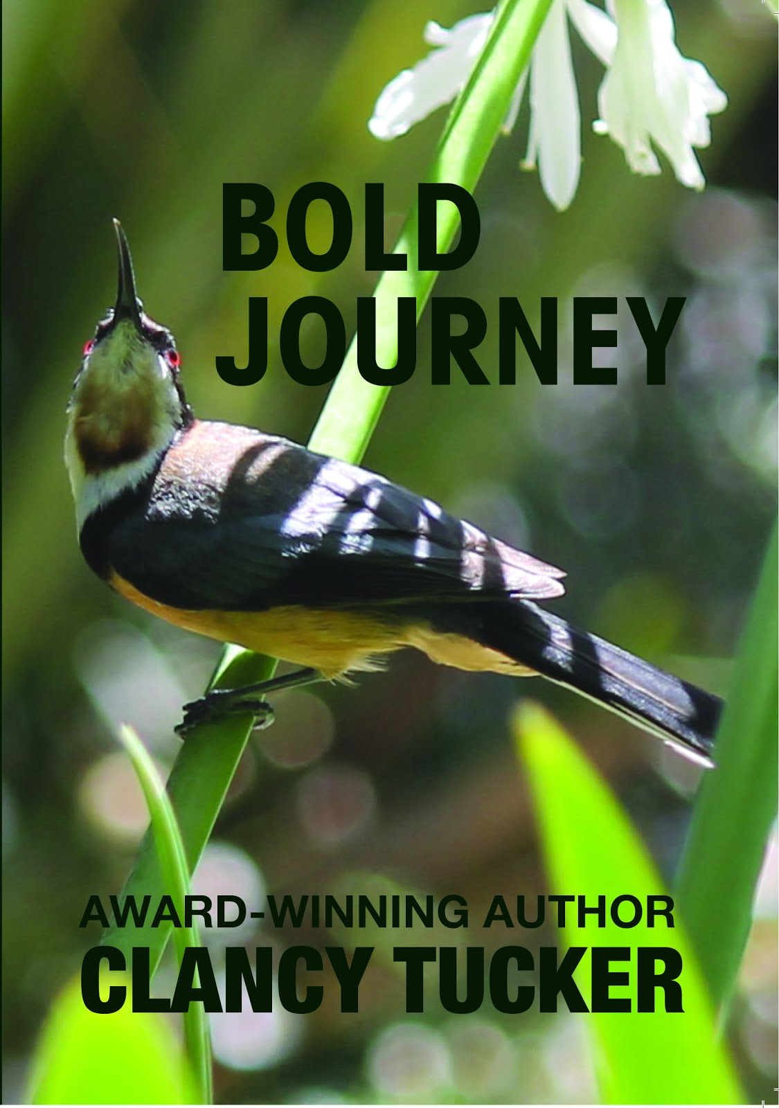 BUY 'BOLD JOURNEY' PAPERBACK FROM OUTSIDE AUSTRALIA