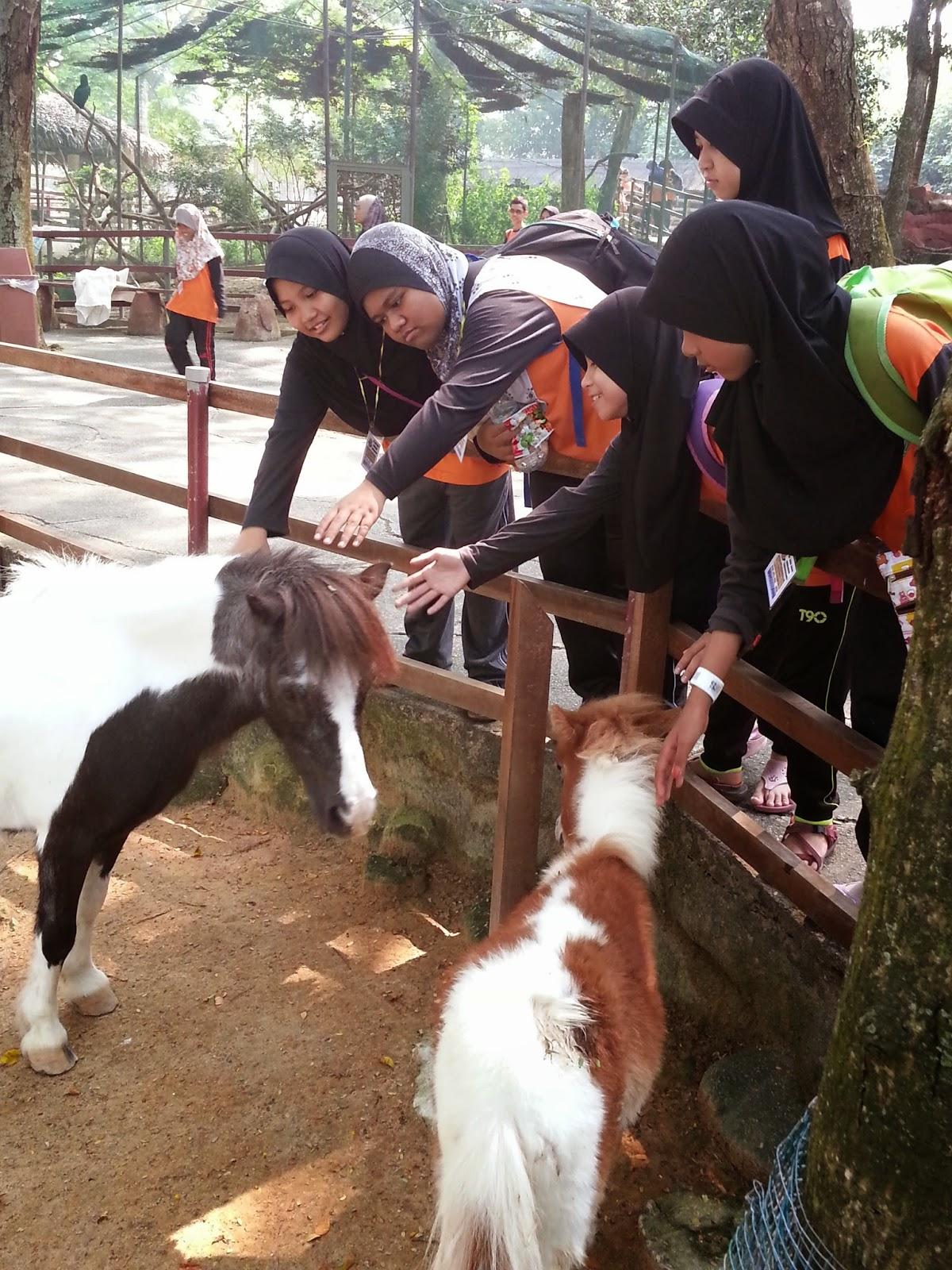 Murid-murid berseronok dengan si pony...