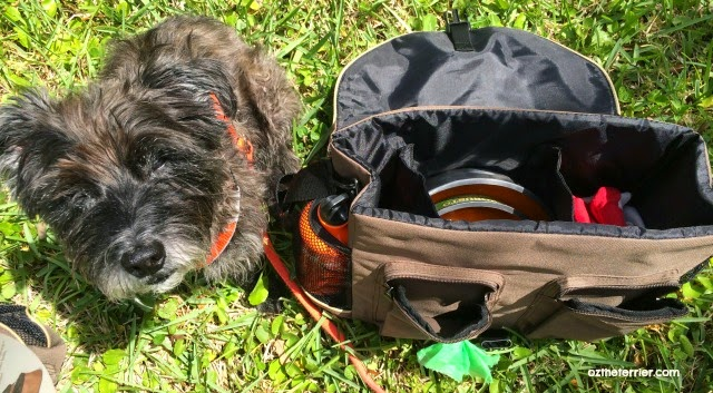Oz the Terrier doesn't leave home without packing his Solvit Products HomeAway Travel Organizer
