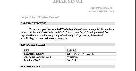 Sap Abap Resume Sample Resume Sample Sap Abap Fresher Resume