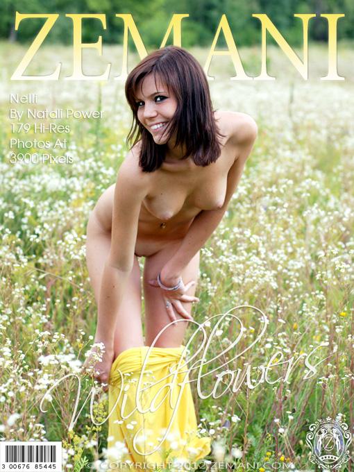 Zeman3-14 Nelli - Wildflowers 05020
