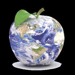 Resenha - Steve Jobs, de Walter Isaacson - Apple World