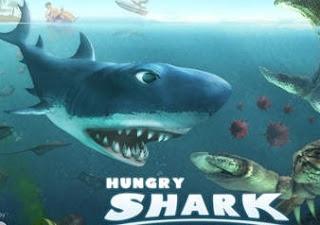 Aç Köpekbalığı Yeni