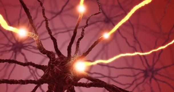 Choques no cérebro despertam temporariamente pessoas de estados vegetativos