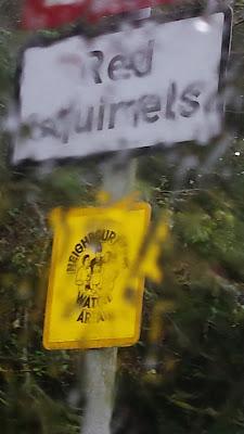 sign in rain