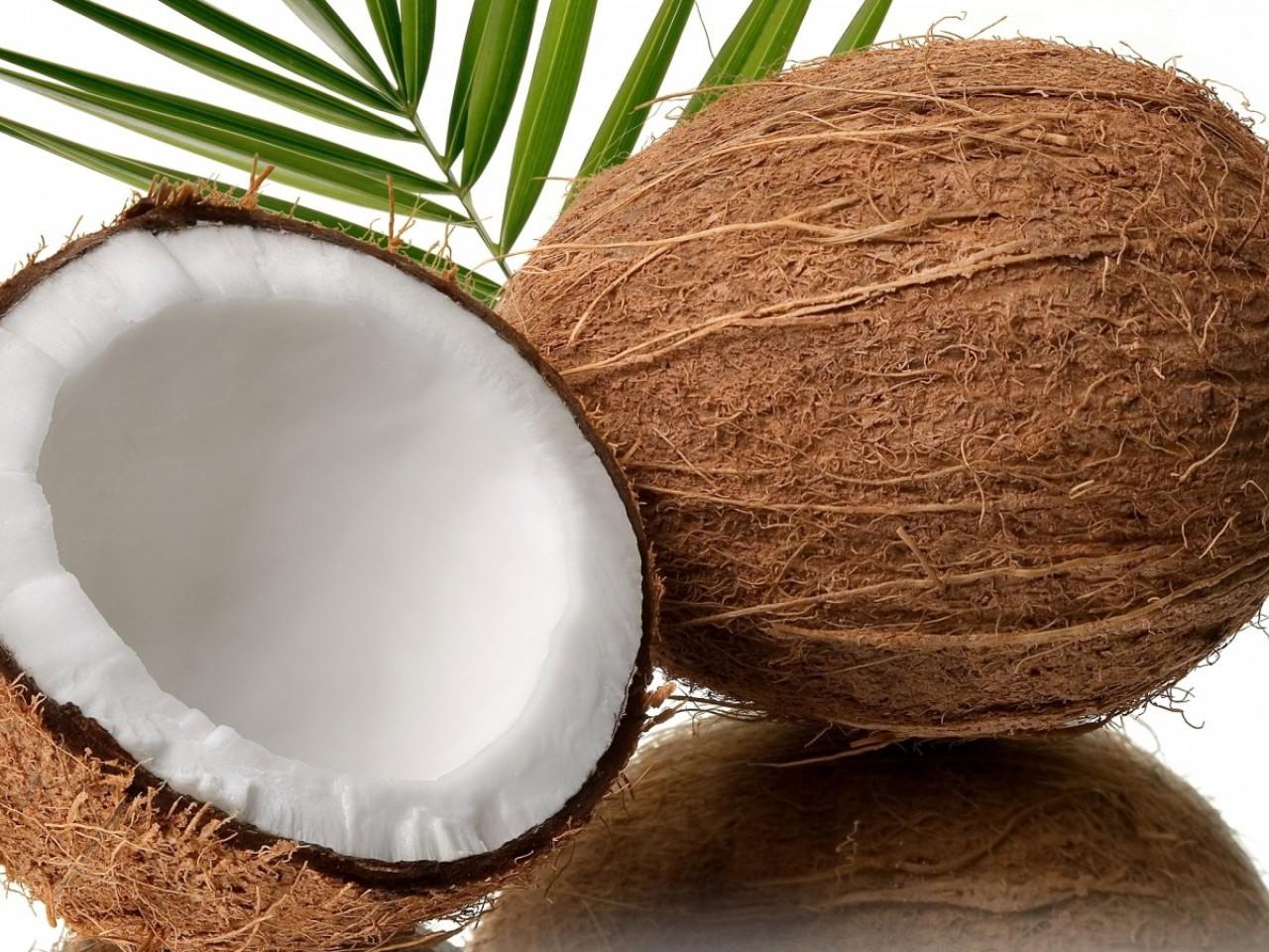 http://1.bp.blogspot.com/-EW70O9PqkiY/T92WTv42v4I/AAAAAAAAAcU/lOGITyyk04A/s1600/coconut-hd-1280x960.jpg