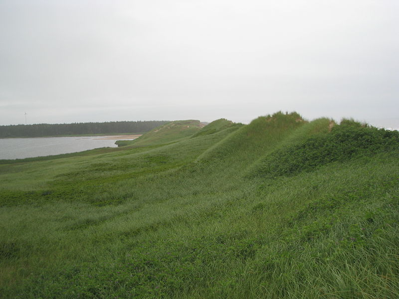 Dunes on Prince Edward Island