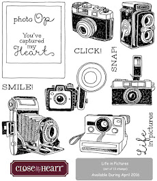 I participate in the Stamp of the Month Blog Hop every month!!