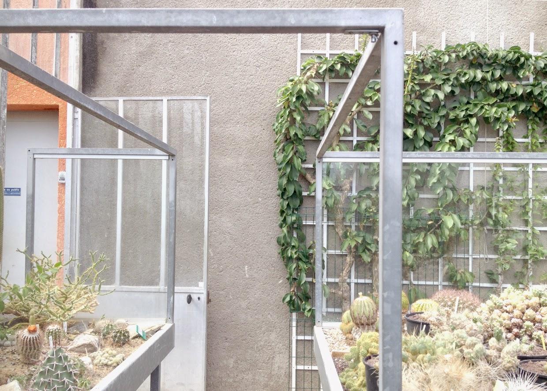 lgb.: Le Jardin des Plantes - Nantes