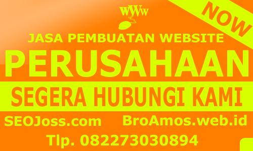 jasa-pembuatan website perusahaan