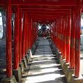花園神社,新宿,鳥居〈著作権フリー無料画像〉Free Stock Photos