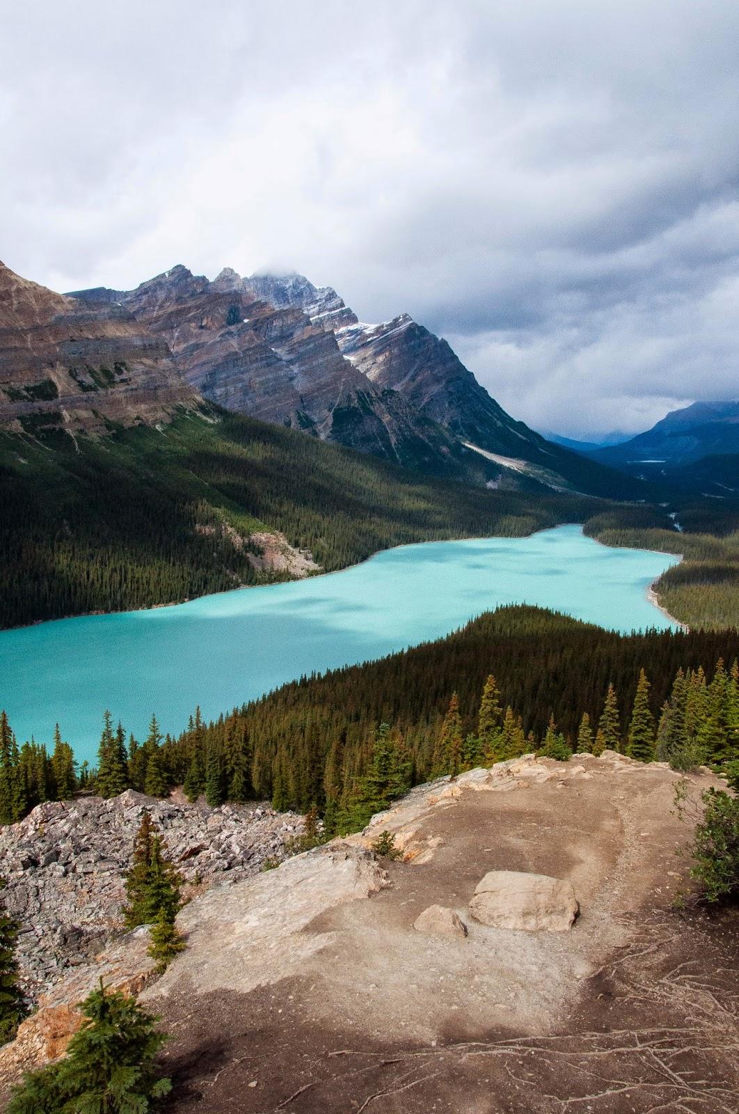 amazing colour of peyto lake, alberta