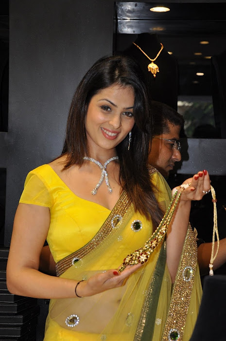 Anjana Sukhani in saree photos