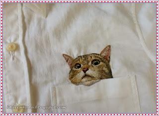 Kucing Dalam Poket