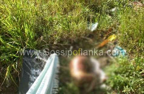 Gossip Lanka News - Baby's body found in Gampola