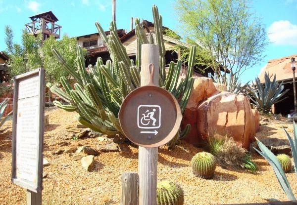 Dicas para visitantes portadores de necessidades especiais Na Disney em Orlando