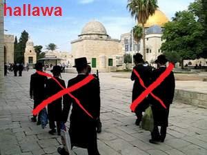 hallawa.blog
